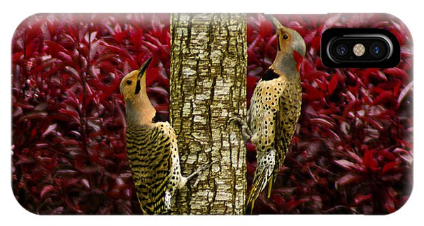 Dueling Woodpeckers IPhone Case