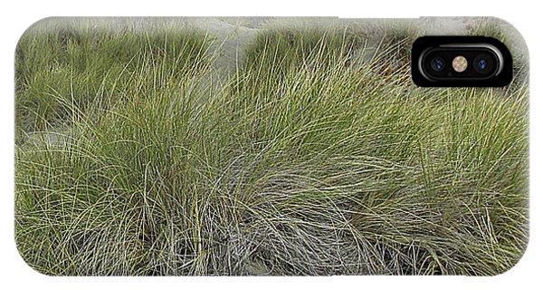 Bodega Dunes #3 IPhone Case