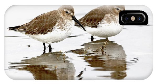 Dunlin Seeing Double IPhone Case