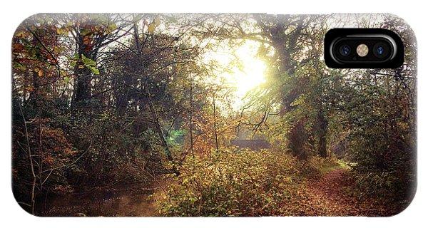 Dunmore Wood - Autumnal Morning IPhone Case