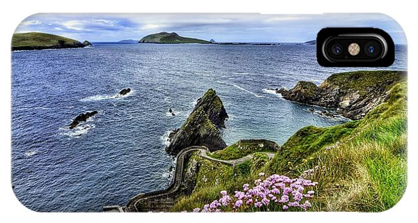 Dunquin Flowers  IPhone Case