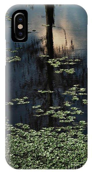 iPhone Case - Dusk In The Swamp by Margie Hurwich