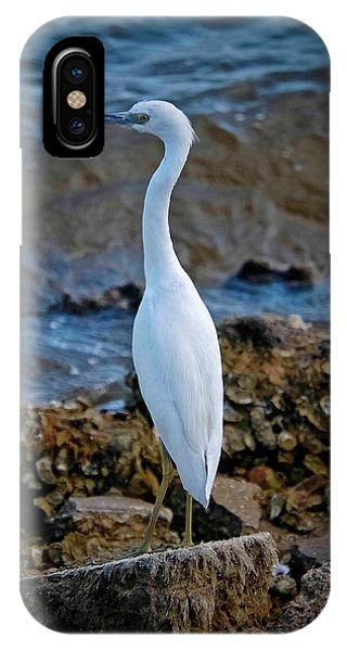 Eager Egret IPhone Case