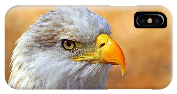 Eagle iPhone Case - Eagle 7 by Marty Koch
