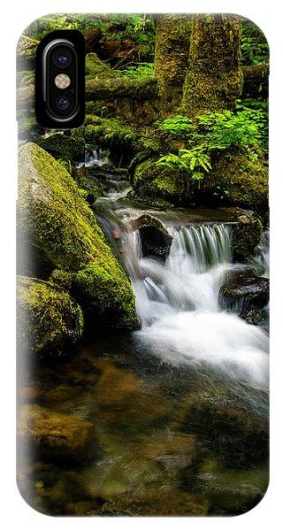 Eagle Creek Cascade IPhone Case