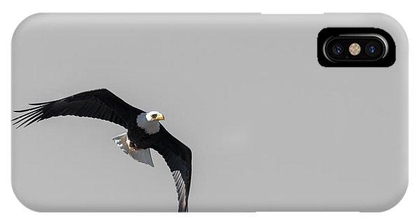 Bald Eagle Flight IPhone Case