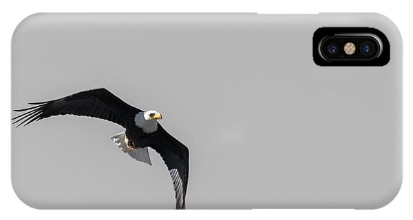 Bald Eagle Flight IPhone Case