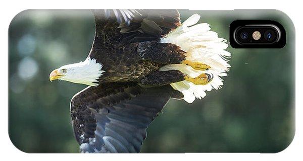 Eagle Flying 3005 IPhone Case