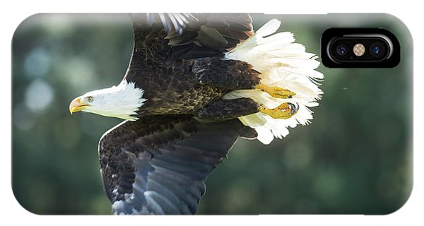 Eagle Flying 3005 IPhone Case