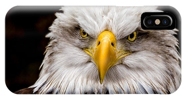 Defiant And Resolute - Bald Eagle IPhone Case