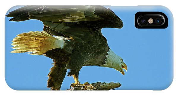 Eagle Mom, The Scolding IPhone Case