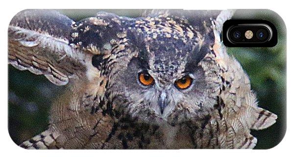 Eagle Owl Close Up IPhone Case