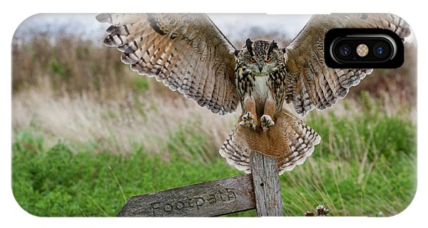 Eagle Owl On Signpost IPhone Case
