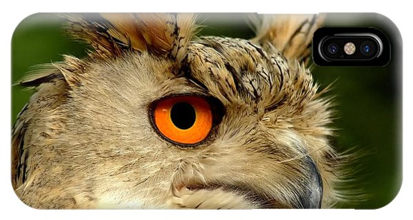 Eagle iPhone Case - Eagle Owl by Jacky Gerritsen