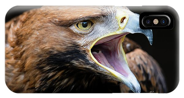 Eagle Power IPhone Case