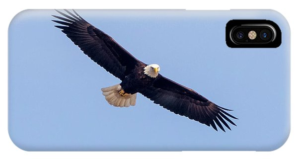 IPhone Case featuring the photograph Eagle Watch 2018 by Ricky L Jones