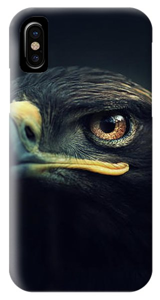 Brown iPhone Case - Eagle by Zoltan Toth
