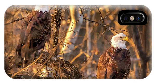 IPhone Case featuring the photograph Eagles by Allin Sorenson