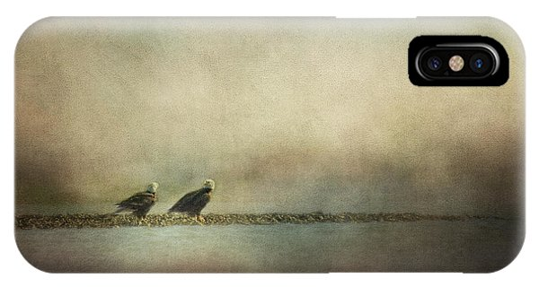 Oyster Bar iPhone Case - Eagles At The Oyster Bar by Jai Johnson