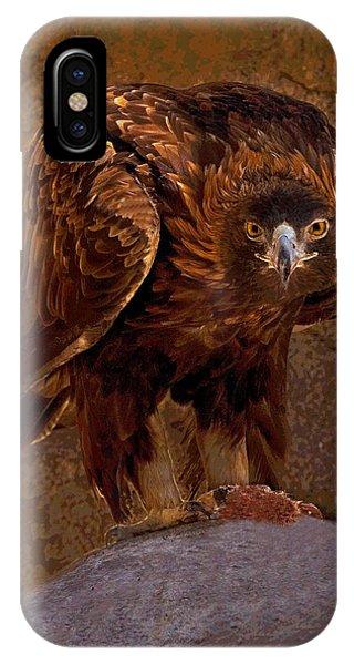 Eagle's Stare IPhone Case