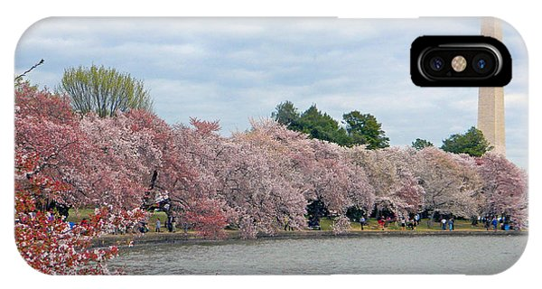 Early Arrival Of The Japanese Cherry Blossoms 2016 IPhone Case