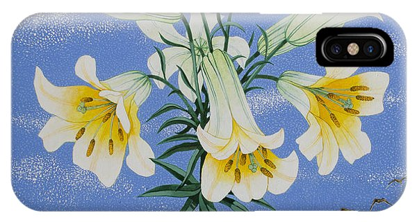 Yellow Trumpet iPhone Case - Early Birds by Pat Scott