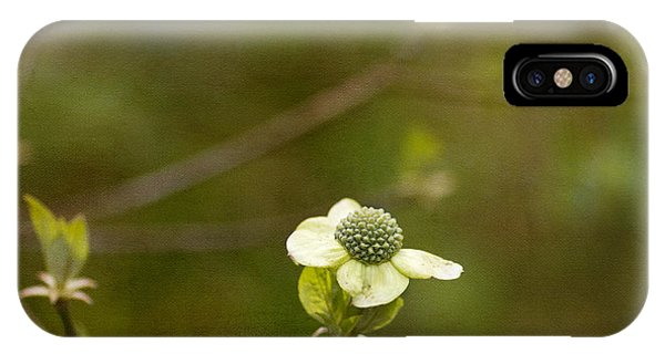 Early Dogwood IPhone Case