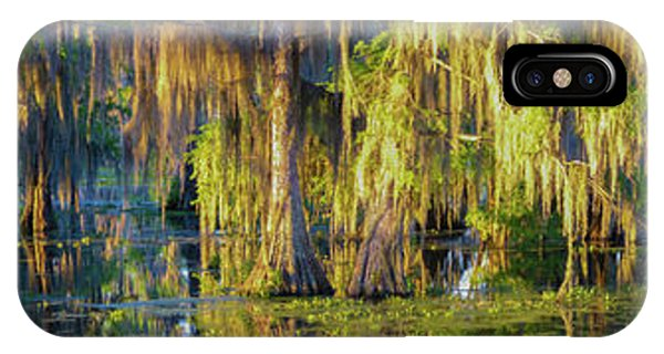 Early Morning Swampscape IPhone Case