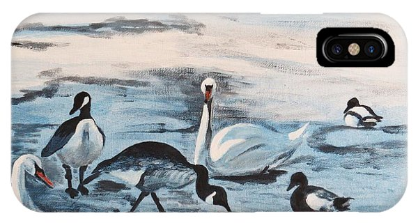 Early Spring Thaw With Ducks And Geese IPhone Case