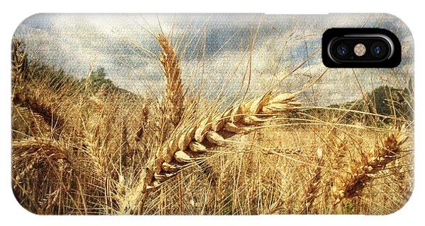 Ears Of Corn IPhone Case