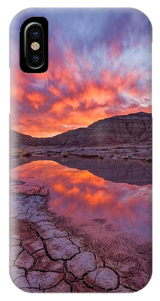 Earth Scales IPhone Case