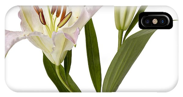 iPhone Case - Easter Lilly by Tony Cordoza