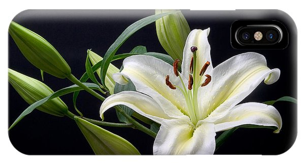 Easter Lily 3 IPhone Case