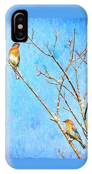 Eastern Bluebird Couple IPhone Case