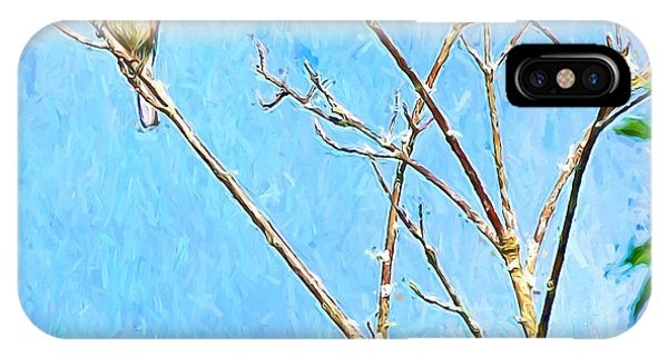 Eastern Bluebird Couple IPhone Case