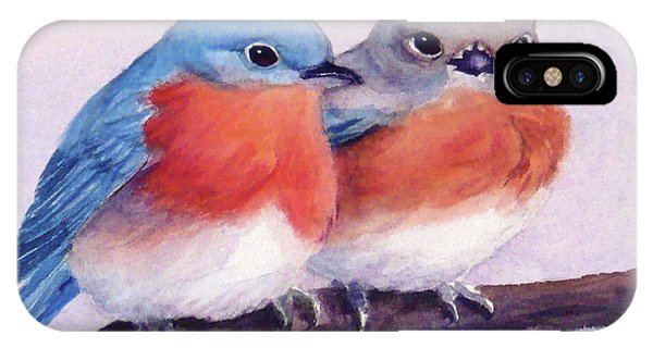 Eastern Bluebirds IPhone Case