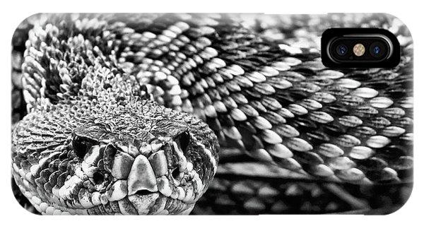 Eastern Diamondback Rattlesnake Black And White IPhone Case