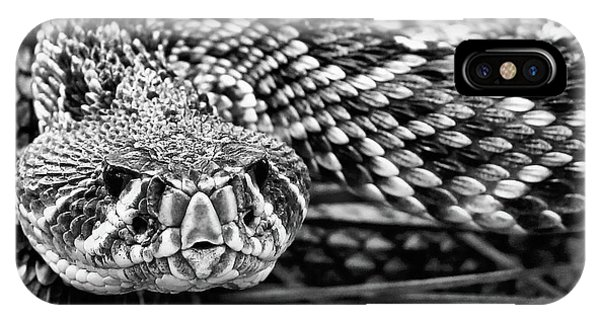 Eastern Diamondback Rattlesnake Black And White IPhone Case