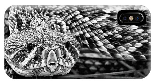 IPhone Case featuring the photograph Eastern Diamondback Rattlesnake Black And White by JC Findley