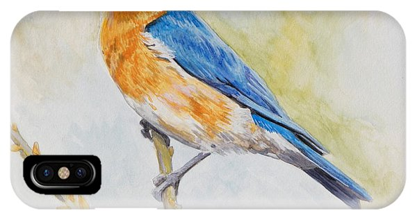 Eastern Mountain Bluebird IPhone Case