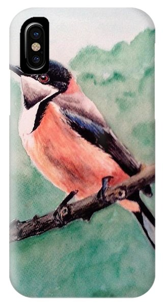 Eastern Spinebill IPhone Case