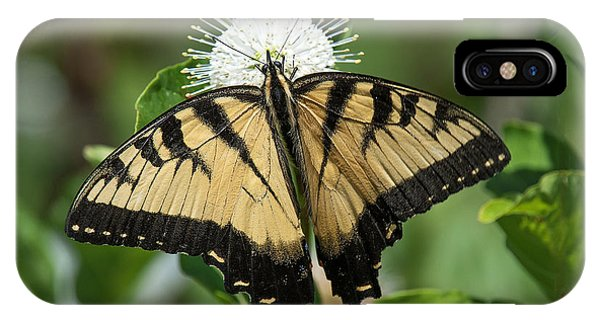 Eastern Tiger Swallowtail Din0254 IPhone Case