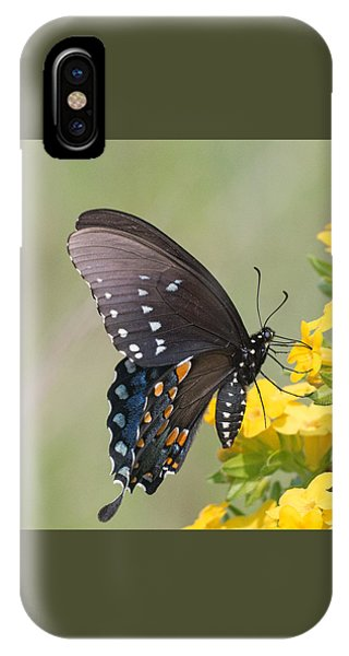 Eastern Tiger Swallowtail IPhone Case