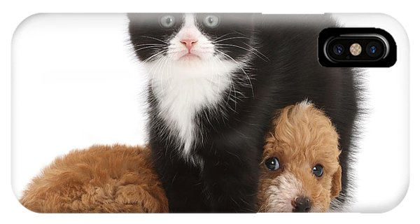 Easy To See Which One Of Us Is The Boss IPhone Case