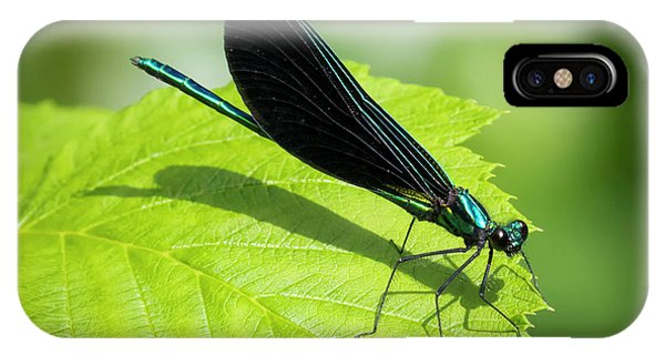 Ebony Jewelwing IPhone Case