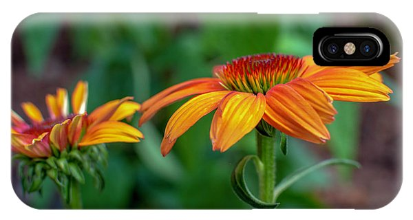 Echinacea Side View IPhone Case