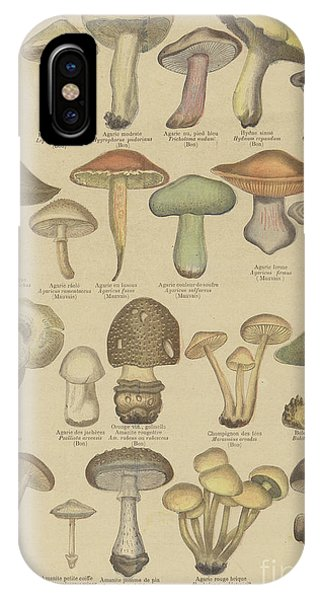 Organic iPhone Case - Edible And Poisonous Mushrooms by French School
