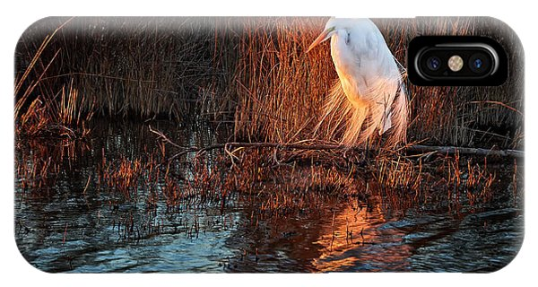 Wakulla iPhone Case - Egret At Last Light by Bill Chambers