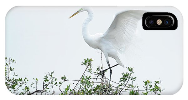 Egret Balance Phone Case by Keith Lovejoy
