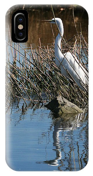 IPhone Case featuring the photograph Egret By A Rock by William Selander